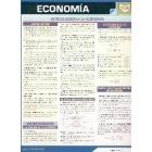 Economía. Guía resumen