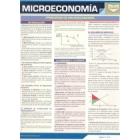 Microeconomia. Guia resumen