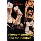 Phenomenology and the political