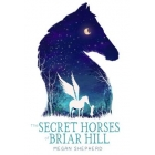The Secret Horses of Briar Hill (Young readers)