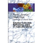 Estudios culturales. Reflexiones sobre el multiculturalismo