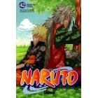 Naruto 42 (català)
