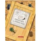 Pequeña colección de insectos