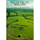 Pagan celtic Ireland. The enigma of the irish iron age