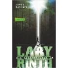 Die Auserwählten - Im Labyrinth  (The Maze Runner Bd.1)