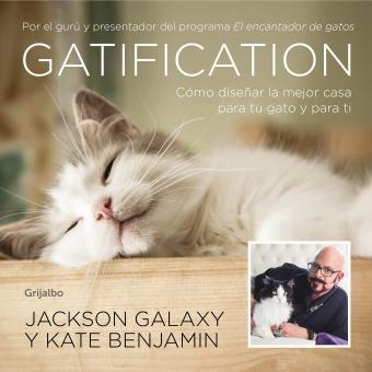 Gatification. Cómo diseñar la mejor casa para tu gato y para ti
