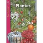 Plantes - Niveau 1, Cycle 2