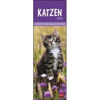 Katzen 2020 Lesezeichen & Kalender