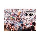 Panenka. Calendario 2018