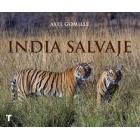 India Salvaje