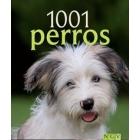 1001 Perros