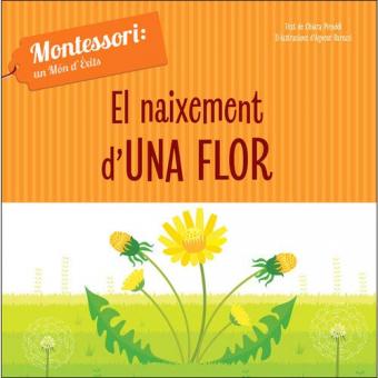 El naixement d'una flor (Montessori)