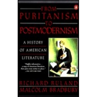 From purianism to postmodernism. A history of American literature