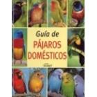 Guía de pájaros domésticos