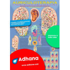 Auriculoterapia (póster). El poder curativo de los reflejos de la oreja