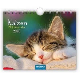 Notizkalender Katzen 2020 Wandkalender Postkartenformat