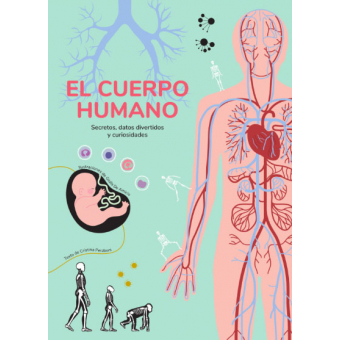 El cuerpo humano (secretos, datos divertidos y curiosidades)