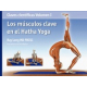 Claves científicas Vol I : Los musculos clave en el Hatha Yoga
