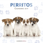 Calendario Perritos 2020
