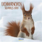 Eichhörnchen 2020: Broschürenkalender mit Ferienterminen