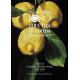 1080 recetas de cocina. Especial Centenario Simone Ortega (1919-2019). Bicentenario Museo del Prado
