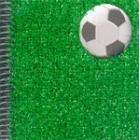 Bojos pel futbol