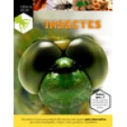 Insectes (pop-up)