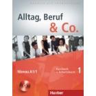 Alltag, Beruf & Co. 1 Niveau A1/1. Kurs- und Arbeitsbuch (+Audio CD zum Arbeitsbuch)