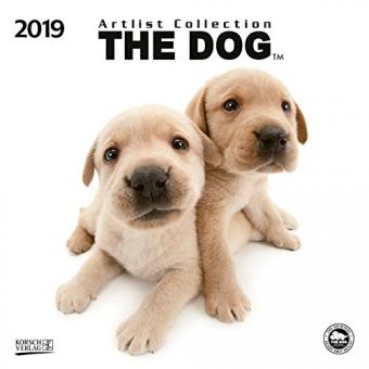 The Dog 2019. Artlist Collection Broschürenkalender: Mit Ferienterminen