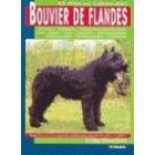 El nuevo libro del bouvier de flandes.