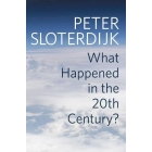 What happened in the Twentieth Century? Towards a critique of extremist reason