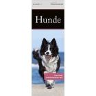 Literarischer Lesezeichenkalender Hunde 2017