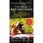 The Art Of Racing In The Rain (film)