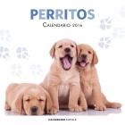 Calendario Perritos 2016