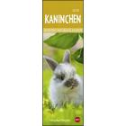 Kaninchen 2020 Lesezeichen & Kalender