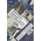 Humanidades digitales: recepción, institucionalización y crítica (Vol. 1)