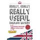 Really, Really, REALLY Useful English Words (audio descargable en MP3)