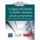 La figura del experto contable: situación actual y perspectivas