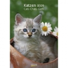 Katzenkalender 2009