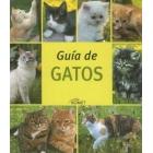 Guia de gatos
