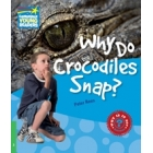 Why does Crocodiles snap? (A1 Level 3 Movers)