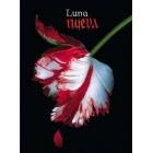 Luna nueva (Ed especial en Tapa Dura)