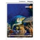 Turtles: Ancient Symbol / Modern Survivor. Upper Intermediate Book with Online Access. Level B2