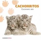 Calendario cachorritos 2015