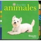 descubre ANIMALES