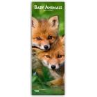Baby Animals 2019 - Tierbabies. Slimline Calendar