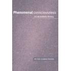 Phenomenal consciousness (A naturalistic theory)