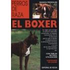 El boxer.