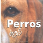 Perros/dogs