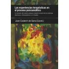 Las experiencias terapéuticas en el proceso psicoanalitico. Un estudio del cambio psíquico desde la teoría de los sistemas dinámicos, intersubjetivos y no lineales